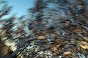trouble naturel - photos H.Moiselet