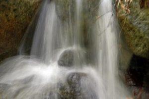 cascade Myriam T.